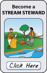 Clickable button to learn more about the Stream Stewards volunteer program.