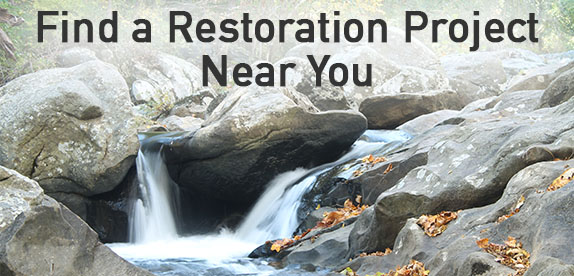 Find a restoration project near you