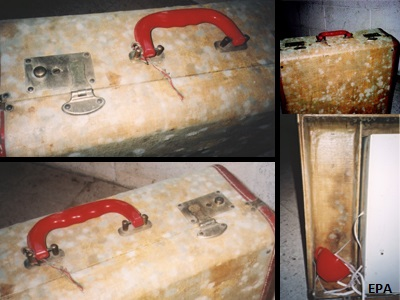 Image of Mold on Suitcase