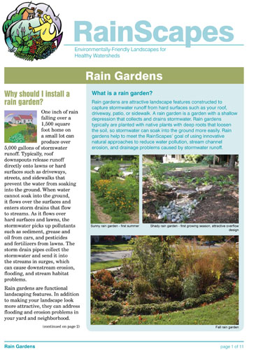 Image of the front of the RainScapes Rain Garden Guide