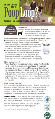 Clean Up After Your Pet in Spanish