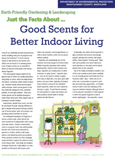 Good Scents for Better Indoor Living