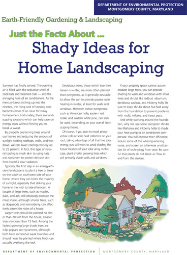 Shady Ideas for Home Landscaping