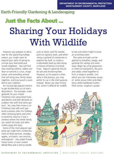 Sharing Your Holidays With Wildlife