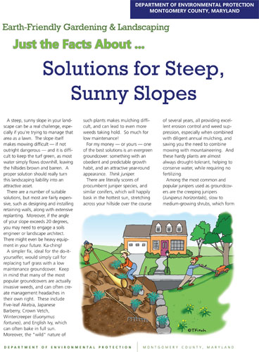 Solutions for Steep, Sunny Slopes