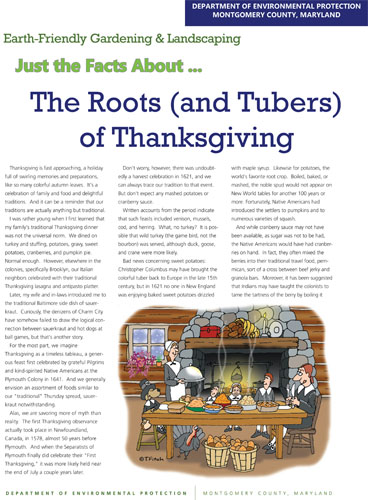 The Roots and Tubers of Thanksgiving