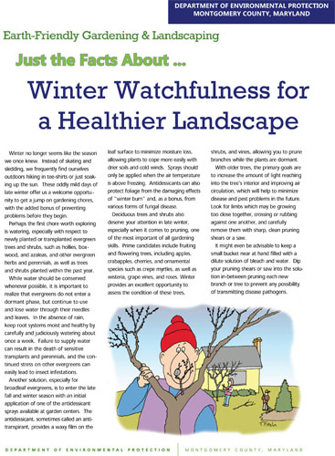 Winter Watchfulness for a Healthier Landscape