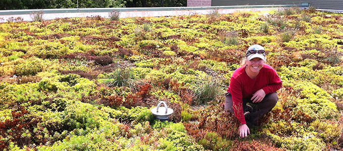 Image of a woman on a green roof