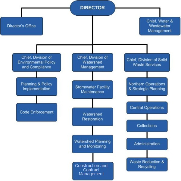 DEP Organizational Chart diagram.
