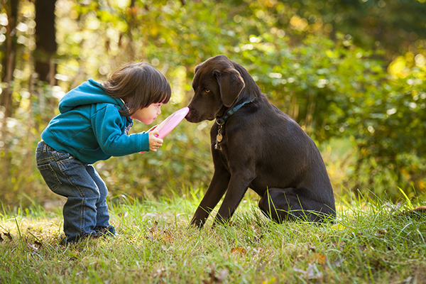 Kid and dog playing on grass