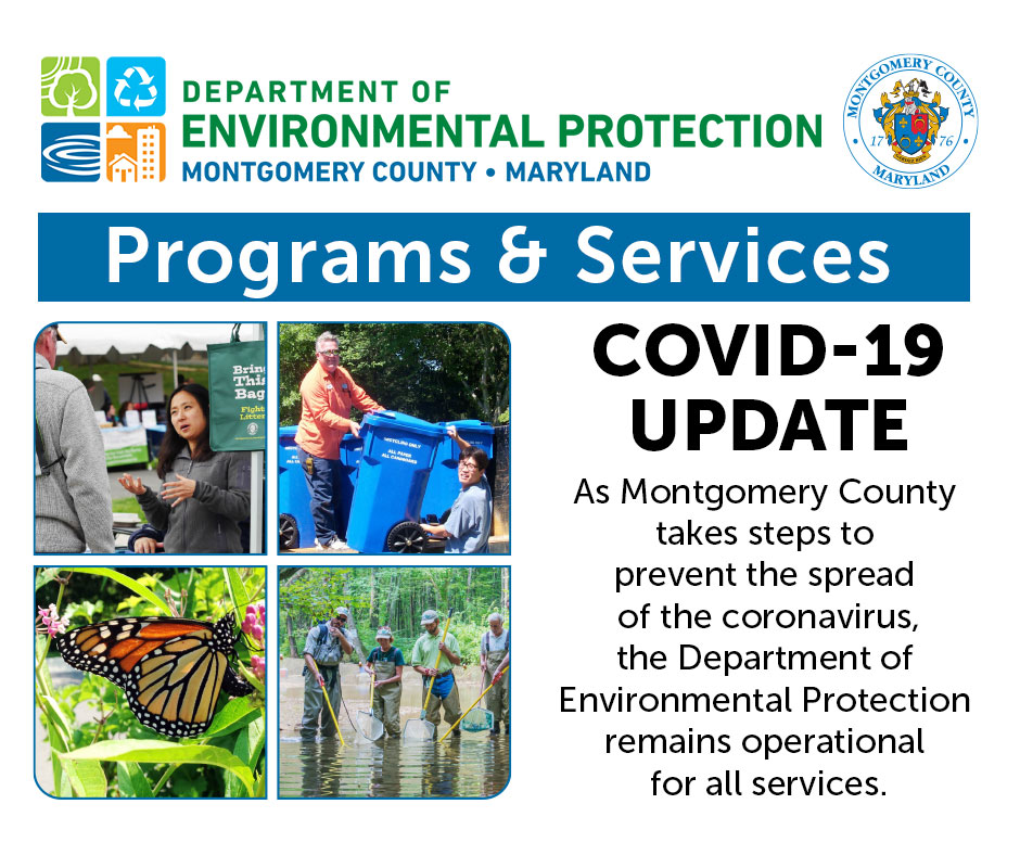 DEP Programs and Services COVID-19 Update