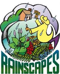 Logo of the RainScapes program