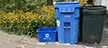 Image of recycling and trash bins