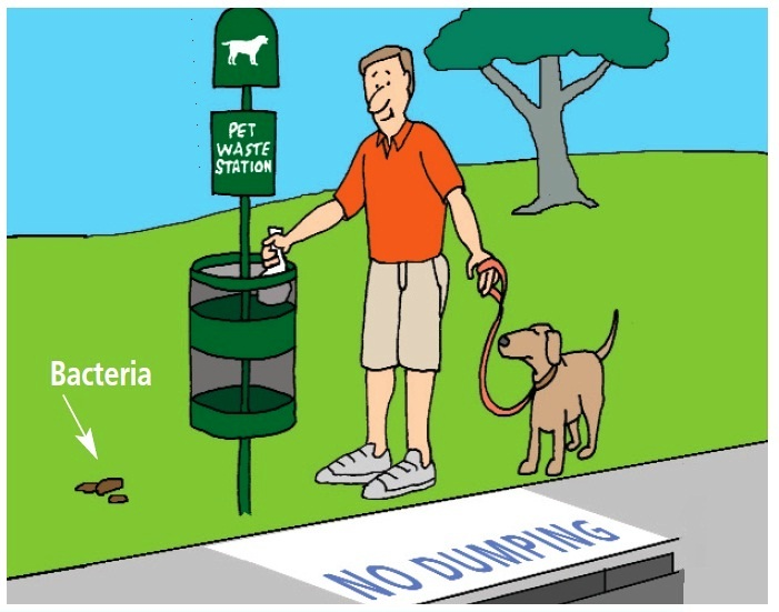 Graphic of man walking his dog and disposing of the pet waste properly.