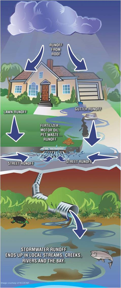 Graphic of stormwater runoff traveling from the roof of a house across a front yard and into a storm drain.
