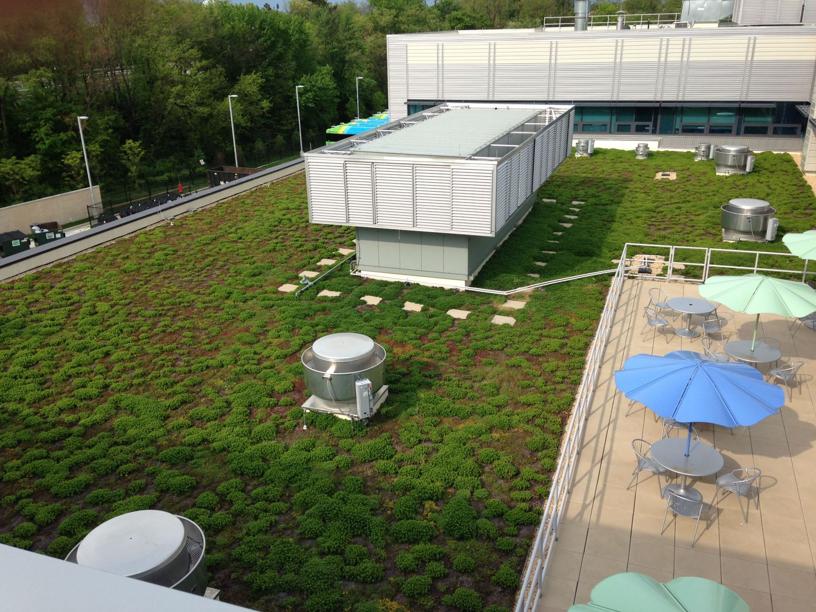 Green roof at EMTOC