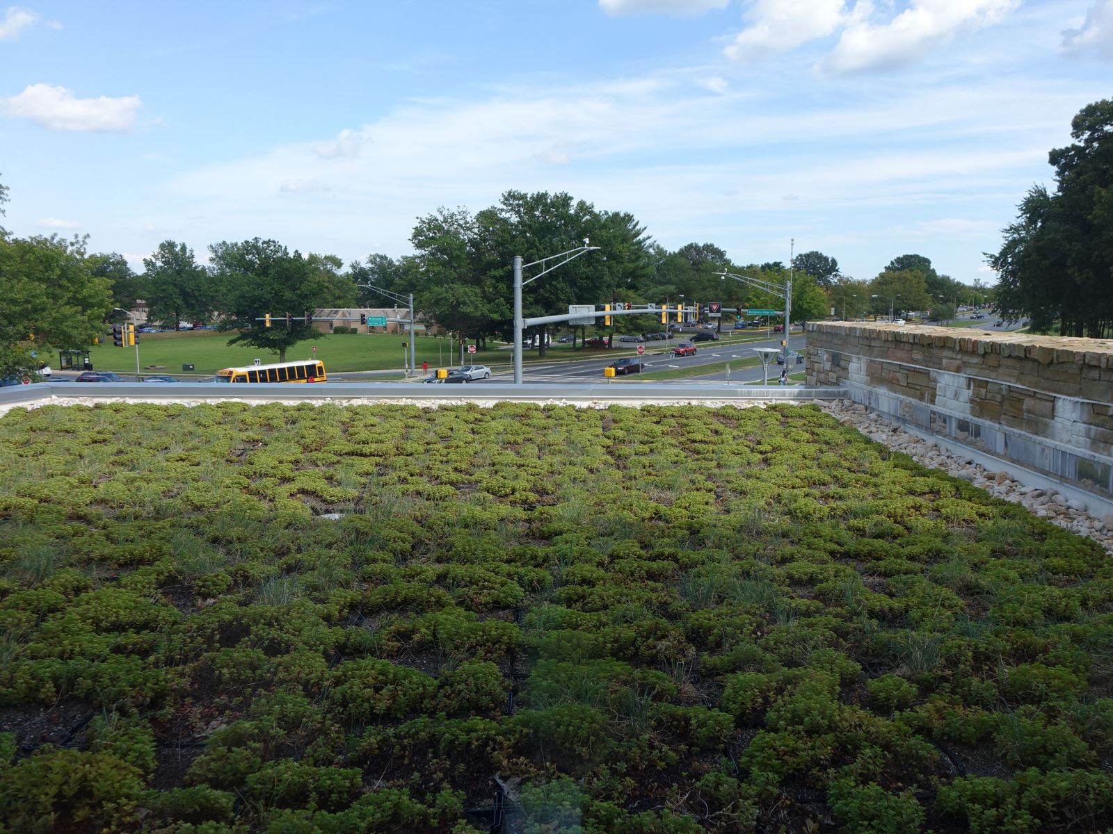 Green roof at Gaithersburg Library