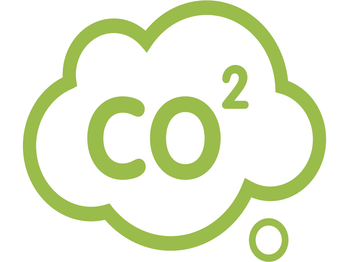 Green CO2 Icon