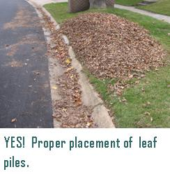 Proper placement of leaf piles
