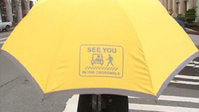 Seattle Umbrella Ped Safety Initiative