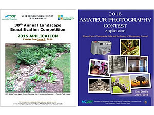 Landscape and Photography competition