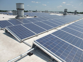 close-up view of solar panels on Transfer Station roof