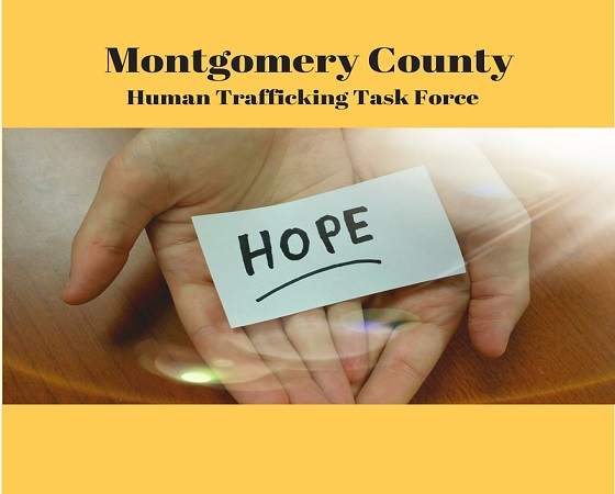 Human Trafficking TaskForce
