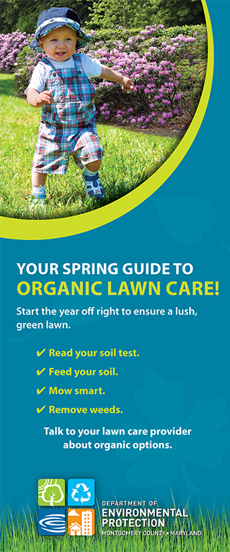 Your Guide to Spring Lawn Care