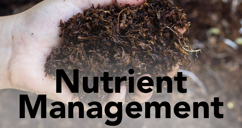 Nutrient Management Tips