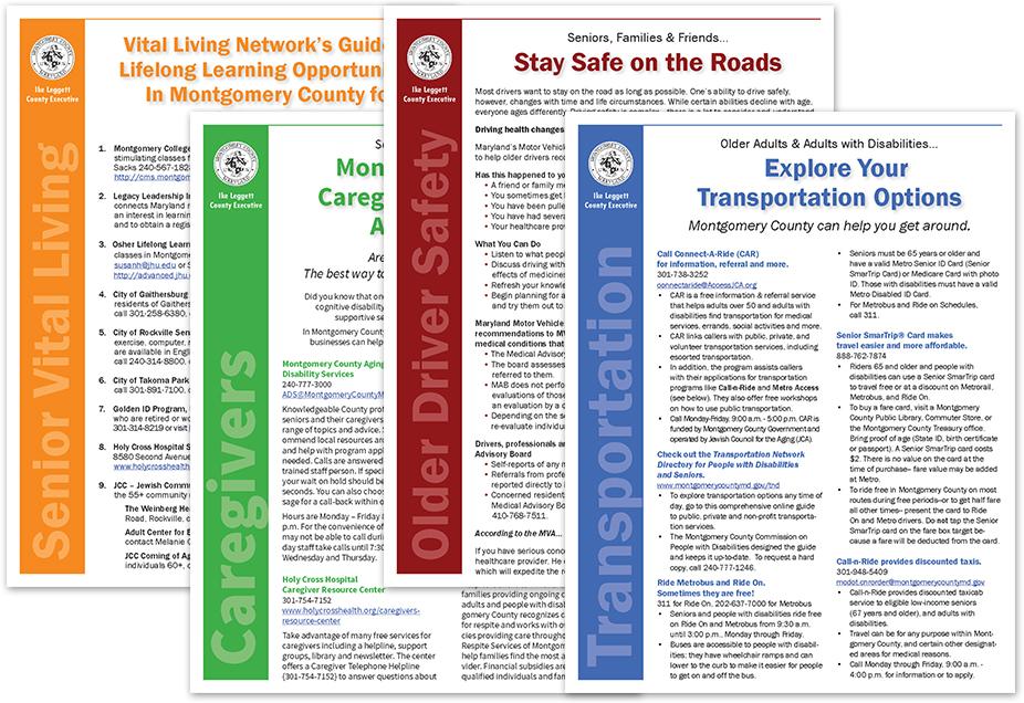 senior site template